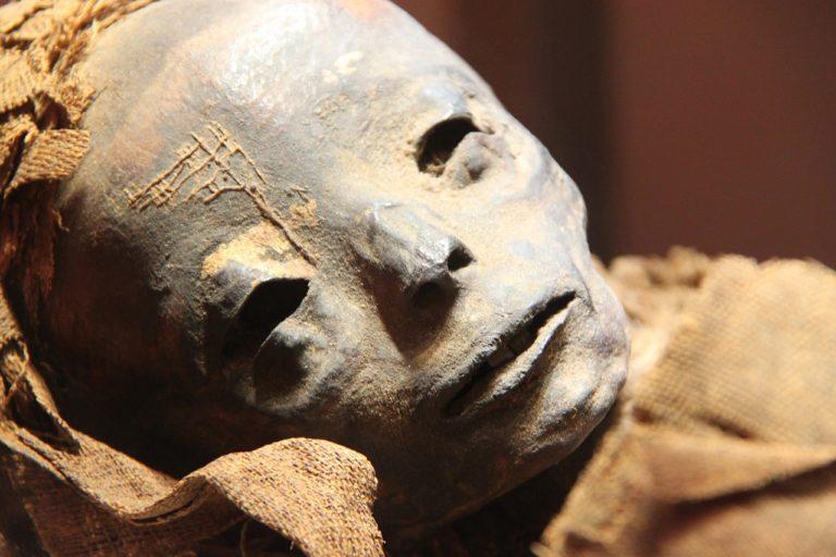 múmia kiállítás